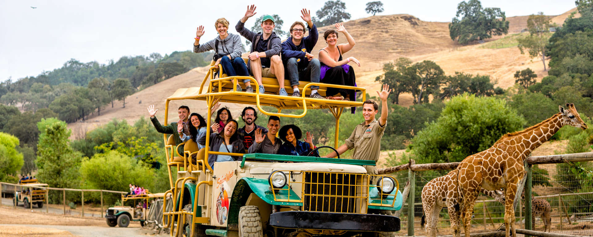 Safari Adventure by Ray Mabry