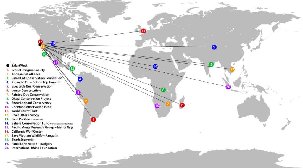 Conservation Efforts around the World