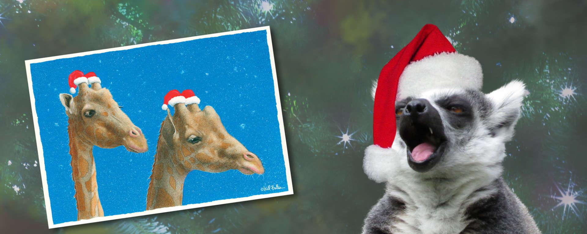 Christmas Gfit Card